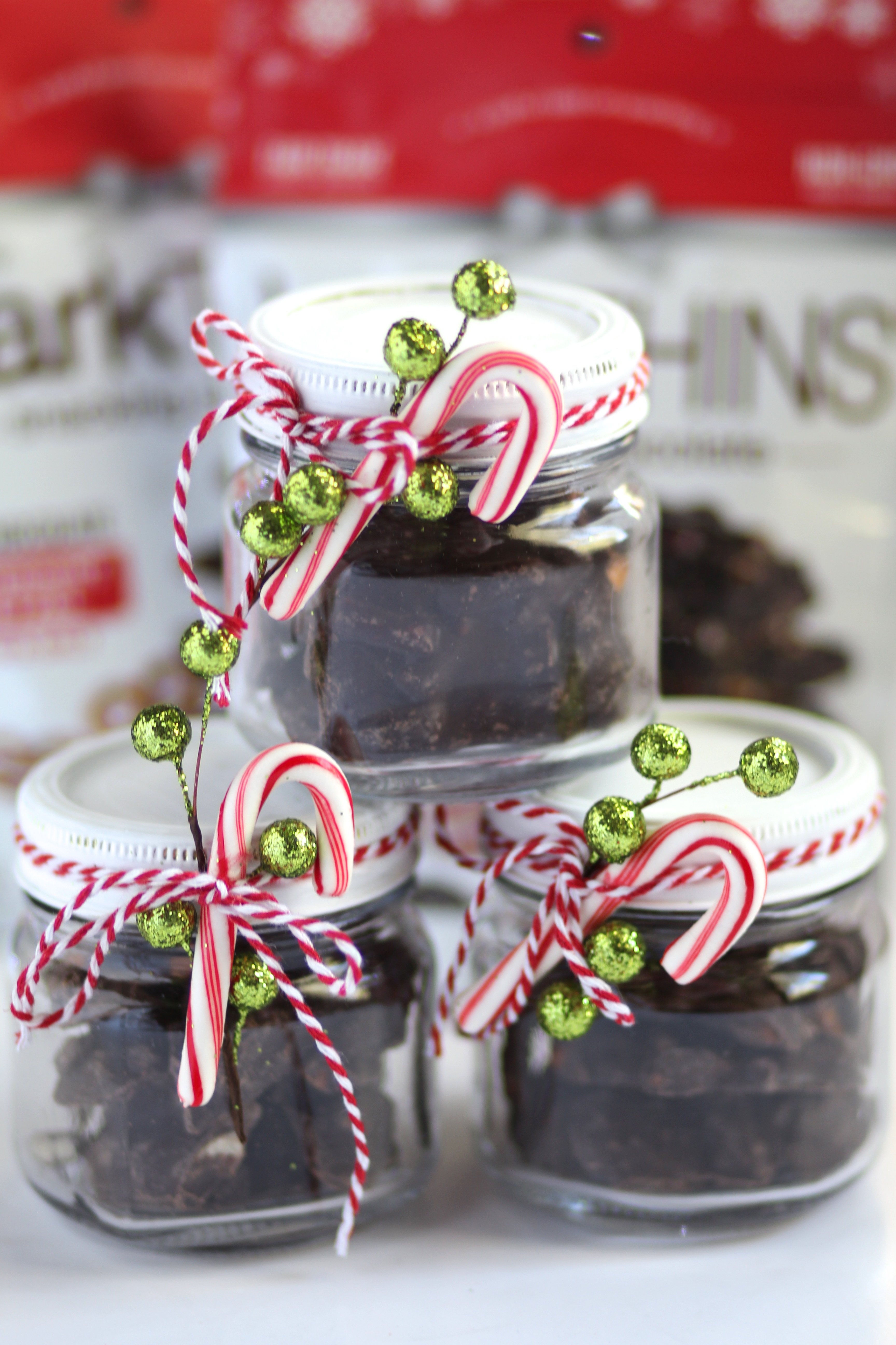 10 minute DIY Christmas Gift Idea | Daily Craving